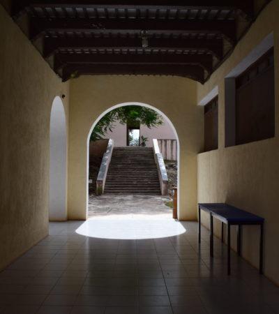 Yucatán conserva su riqueza natural