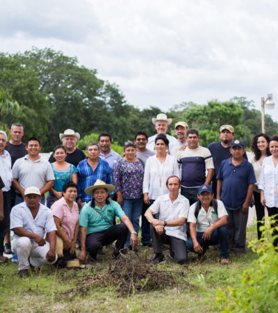 Buscan agilizar transición hacia la agricultura ecológica en la Península